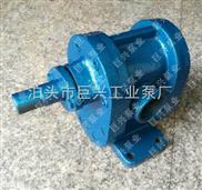 铸铁管道泵齿轮泵实验室用微型泵