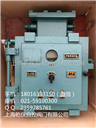阀门控制箱KXBC-12X15/660V(380V)DZ