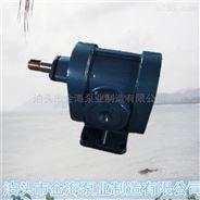 2CY12方煤焦油泵/渣油泵 耐磨齿轮泵