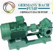进口齿轮油泵(德国进口工业品质)