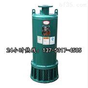 防爆排污排沙潜水电泵BQS150-100/2-90/N黑河图片