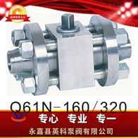 Q61N型高压对焊球阀