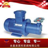 磁力传动旋涡泵