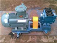 尼龙齿轮泵  车载圆弧泵 煤油输送泵