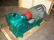 保溫齒輪泵 不銹鋼保溫泵 齒輪瀝青泵
