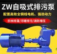 不锈钢管道自吸泵 无堵塞自吸排污泵