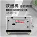 15kw静音柴油发电机带电梯