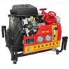 双缸手抬机动自吸式抽水泵 东进牌汽油泵