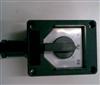 BZZ8050-63/3防爆防腐转换开关